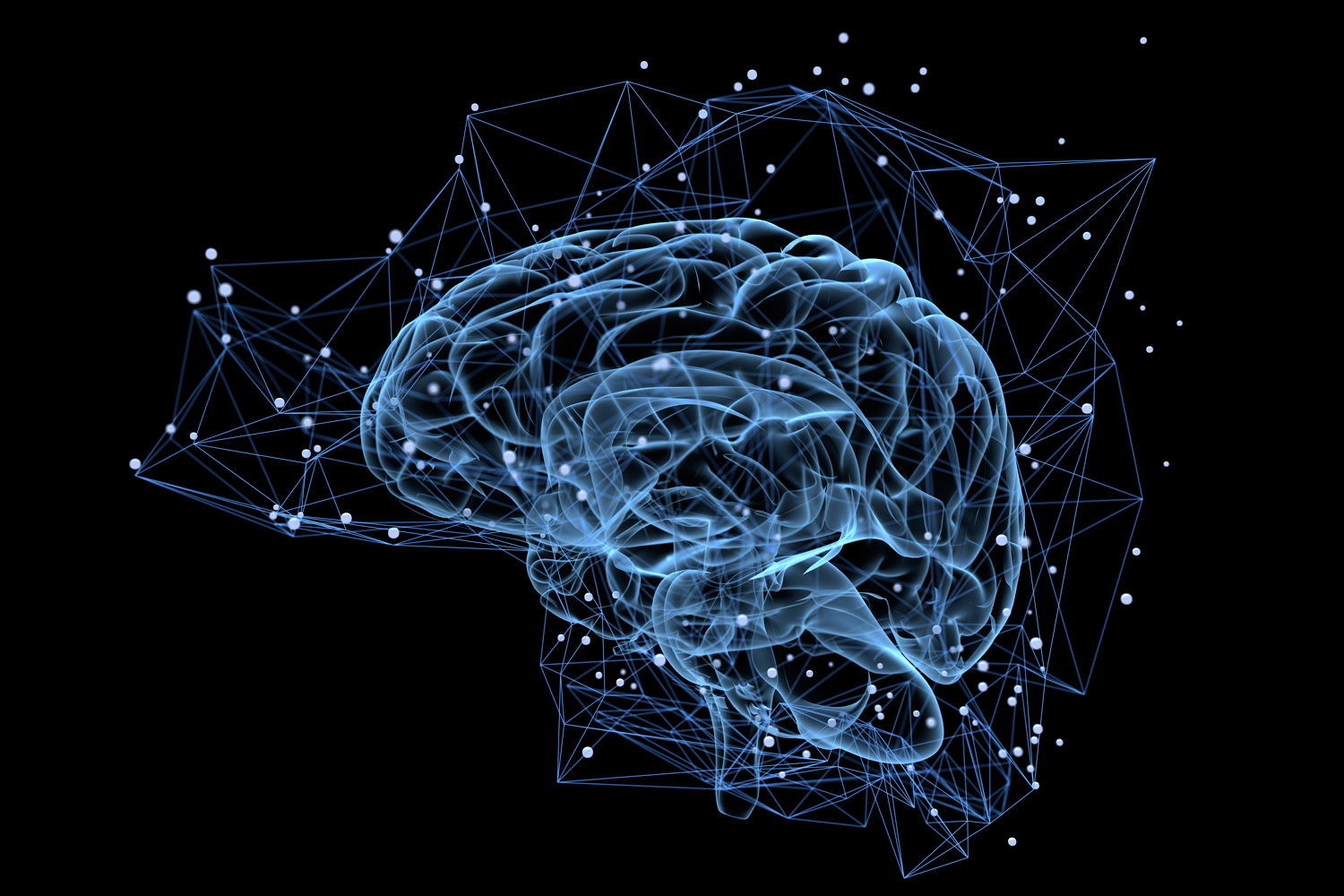 transparent brain cells with connecting nodes