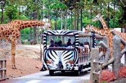 Chiang Mai Safari