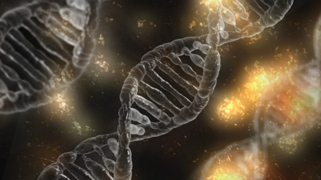 One of the major risk factors for addiction is heredity