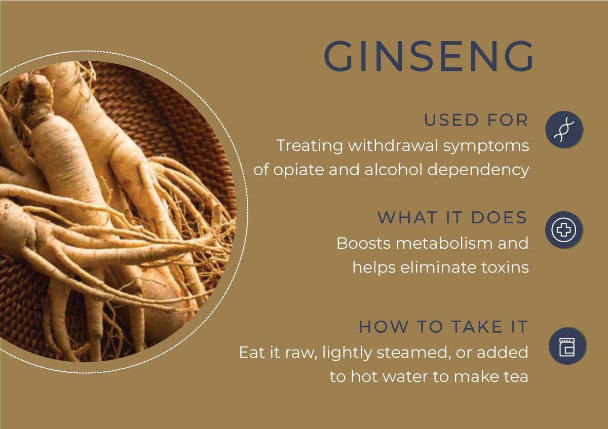 8 Herbs to Curb Your Cravings - Ginseng